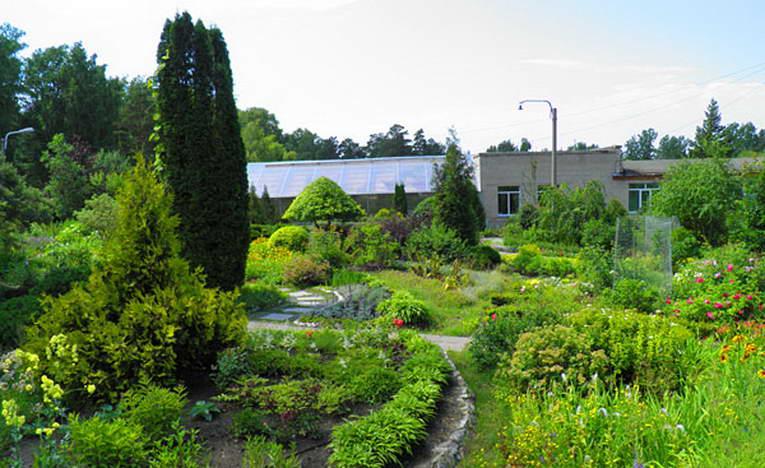 Ботанический сад Новосибирск