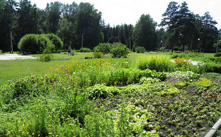 Ботанический сад в Новосибирске