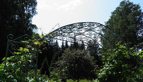 Главный ботанический сад в Новосибирске