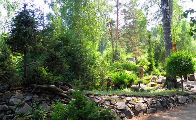 Ботанический сад на улице Золотодолинской