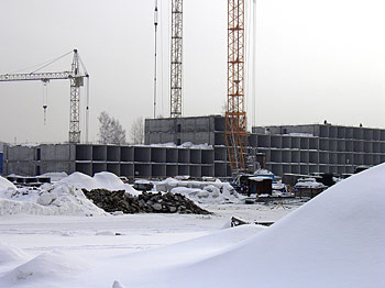 Сибирь-Развитие, Березовое