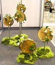 Конкурс профессиональных флористов 2014