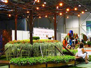 Цветы, сады и парки Сибири 2014, Центральный район
