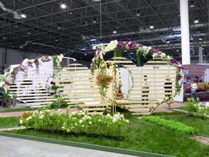 Выставка Цветы, сады и парки Сибири 2013, Центральный район