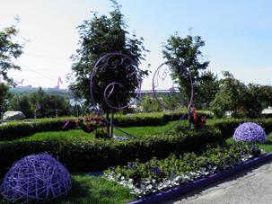 Выставка цветов на берегу Оби