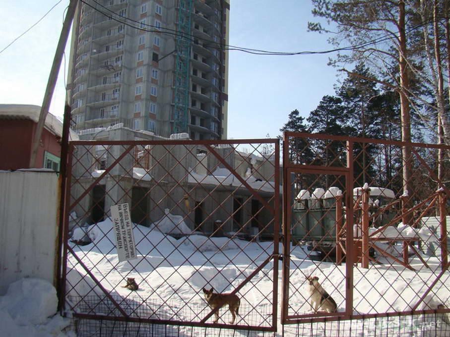 Залесского, 2/3 (2а стр), дом Нельсон фотоотчет строительной площадки